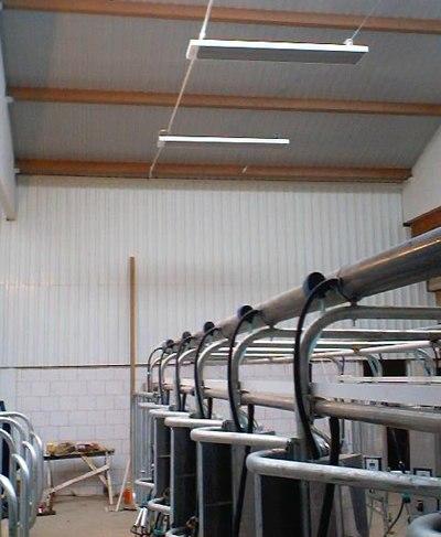 экономичное отопление птицефермы электрическими инфракрасными обогревателями